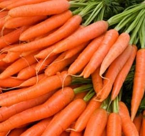 iStock_carrots-photosize-2