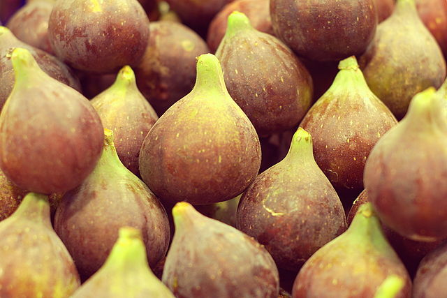 Figs_Closeupjpeg