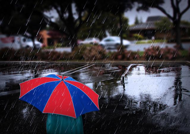 umbrella_bluesbby_flickr