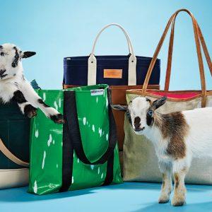 goatshoriz