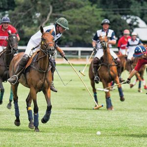 The sport of kings at Aiken Polo Club