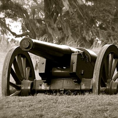 A canon at Fort McAllister