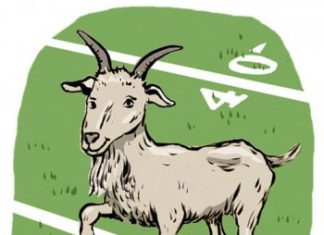 home of the goats