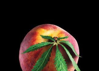 Medical Marijuana in Georgia