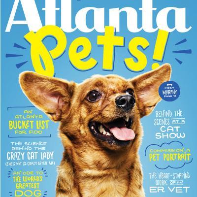 Atlanta Pets