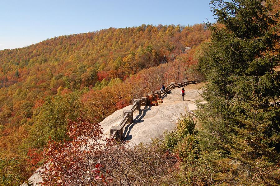 Black Rock Natural Resources