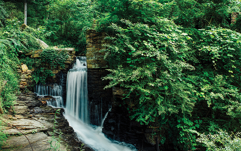 Get hiking on these 3 favorite Atlanta trails