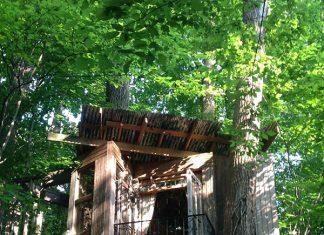 Airbnb Buckhead treehouse