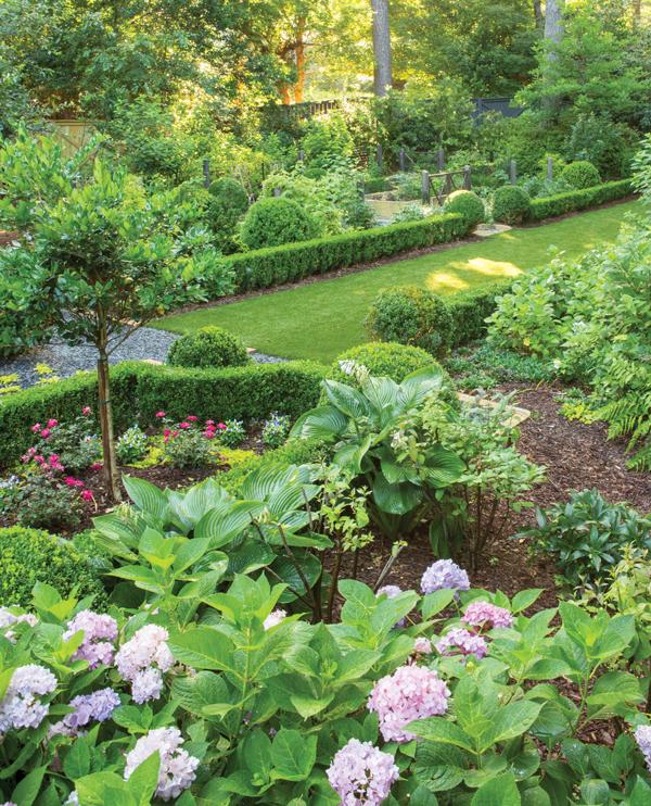 Peachtree Park garden