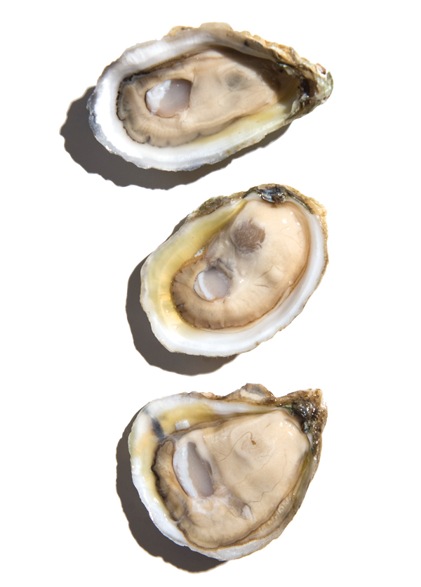 Kimball House Oysters Top: Point Aux Pins, Grand Bay, Alabama Middle: Murder Point, Sandy Bay, Alabama Bottom: Isle Dauphine, Mississippi Sound, Alabama