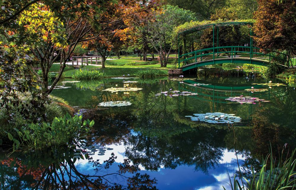 Monet Waterlily Festival