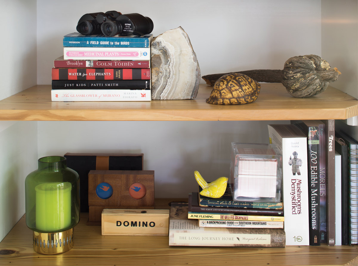 Shells and pods found on hikes add an organic feel to the living room's built-in shelves.
