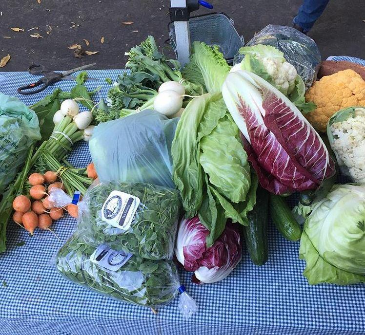 Woodland Garden vegetables at Freedom Farmers' Market
