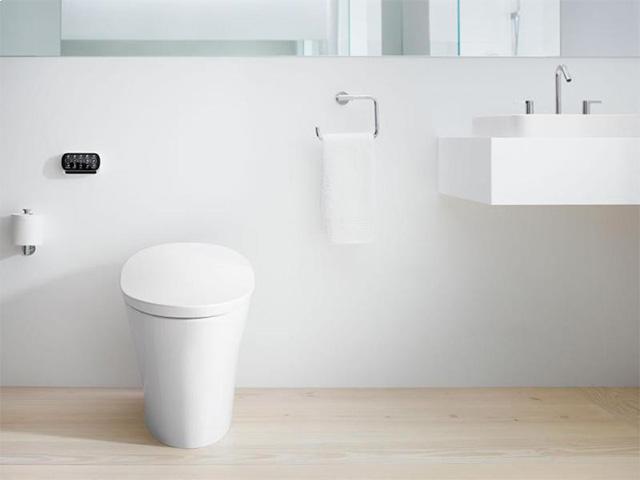 Intelligent toilet