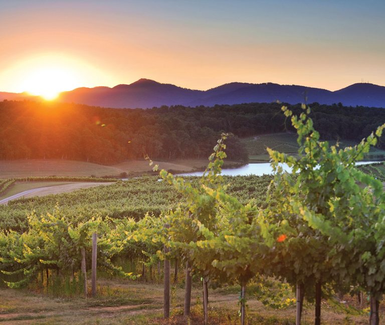 Take Five: Wineries