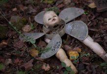 Dolls Head Trail 900x600