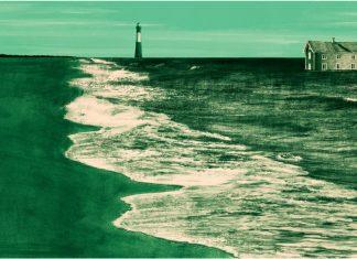 Georgia's Vanishing Coast - Illustration by Zach Meyer