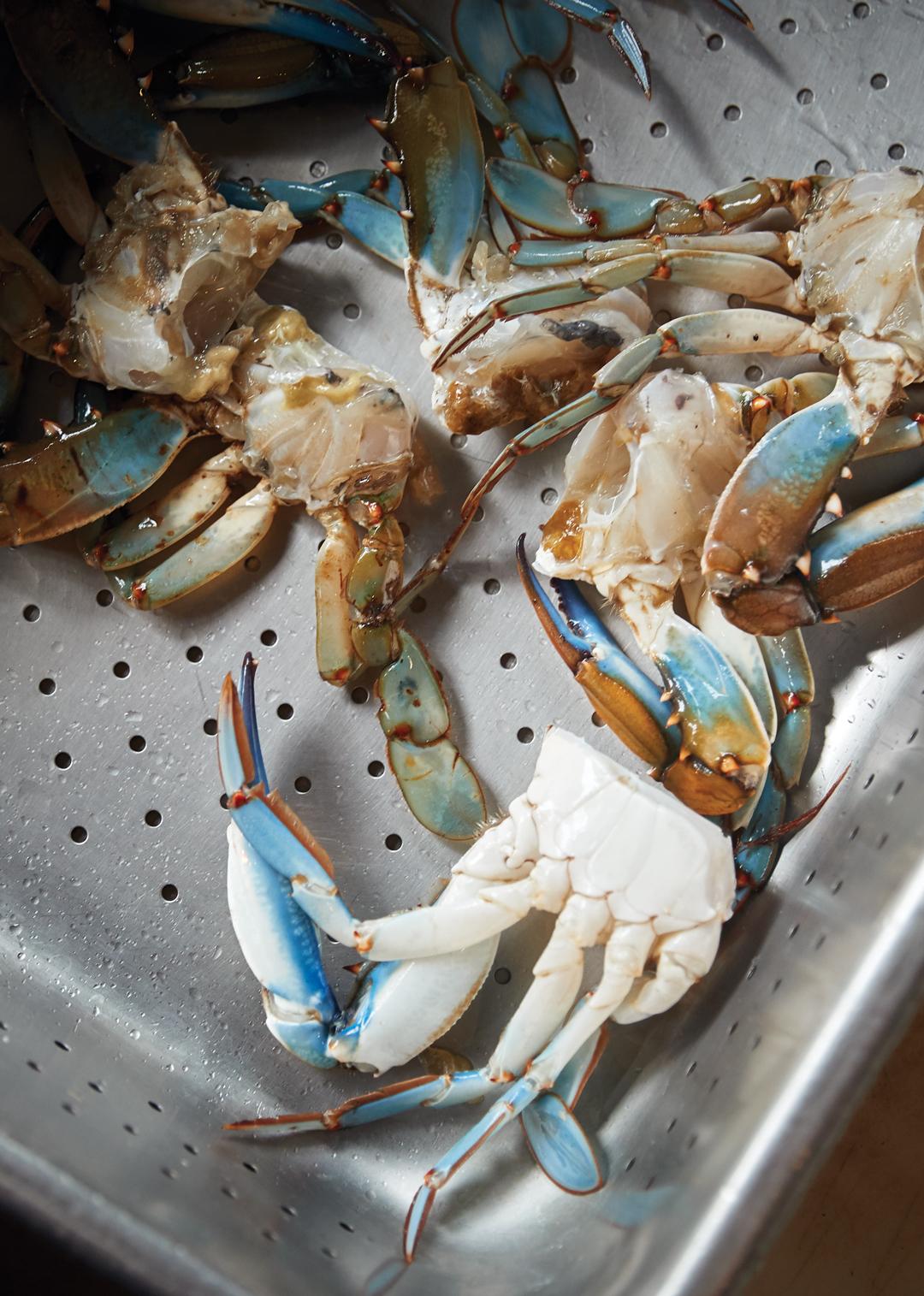 Sunbury Crab Company