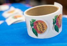 Everything you need to know election day Atlanta