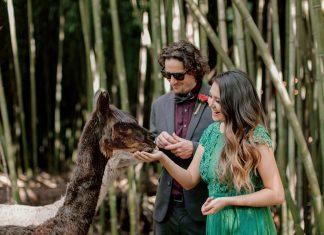 Sweet Grass Weddings