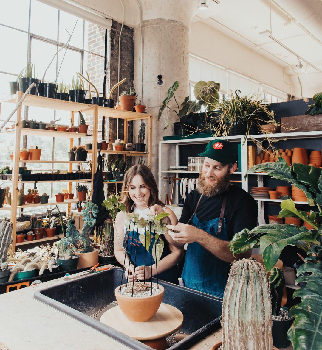 Houseplants: Victorian Atlanta