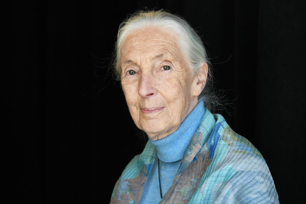 Jane Goodall Atlanta