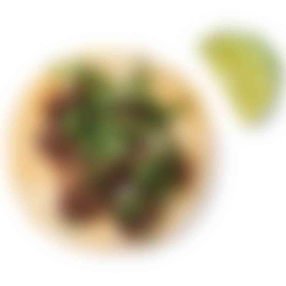 50 Best Tacos in Atlanta: Cabeza taco at El Gallo Giro