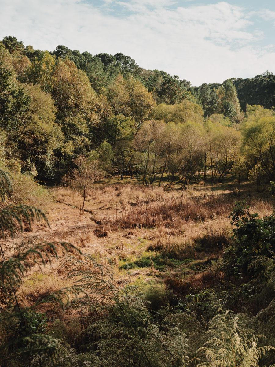 Lake Charlotte Nature Preserve