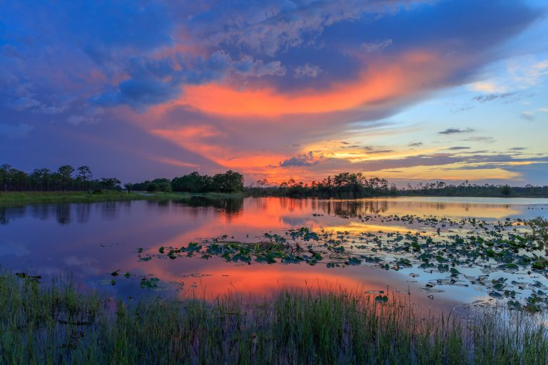 Escape to the Outdoors in Martin County